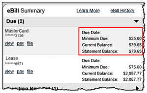 eBill summary screenshot