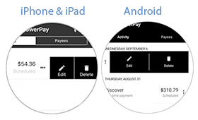 Screenshot of editing a payment icon.